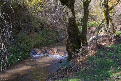 El misterioso río Fardes